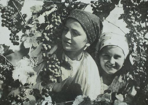 vendimia-lituania-1920