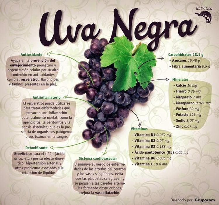 10 Infografías interesantes sobre uvas - vinopack