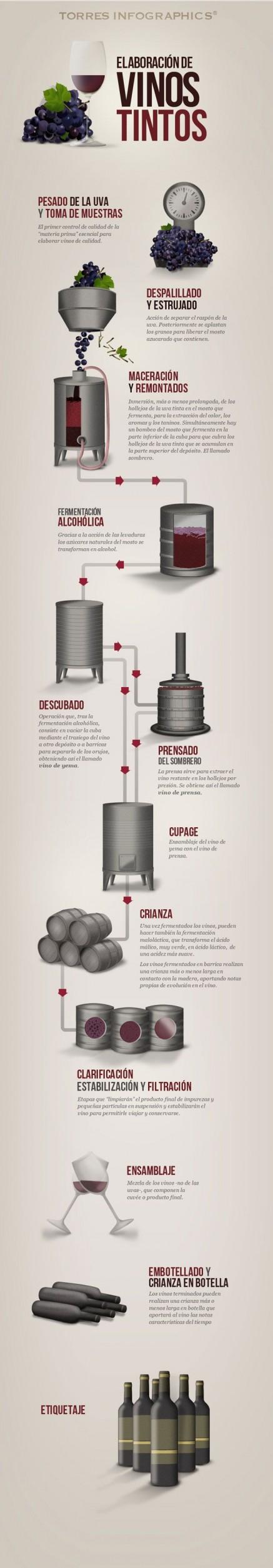 infografia-vino-tinto
