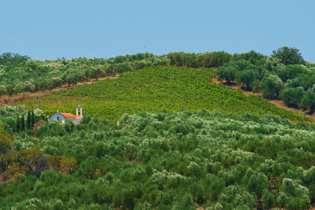 creta-wines