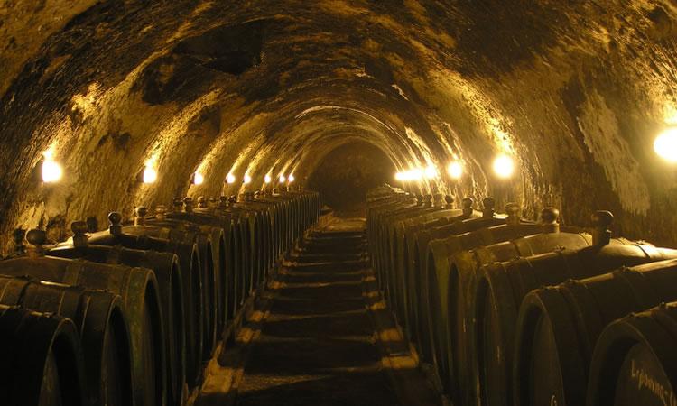 unesco-tokaj-cellar
