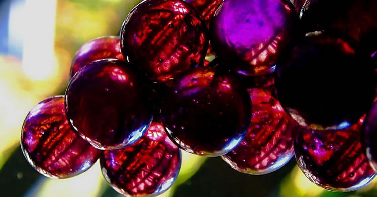 grape-compuestos