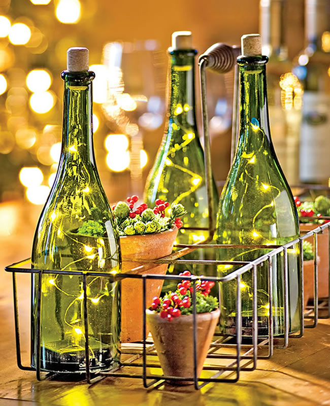 botellas-jardin-flor-pascua