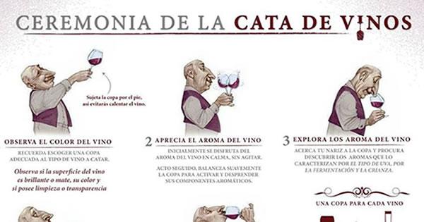 cata-infografias