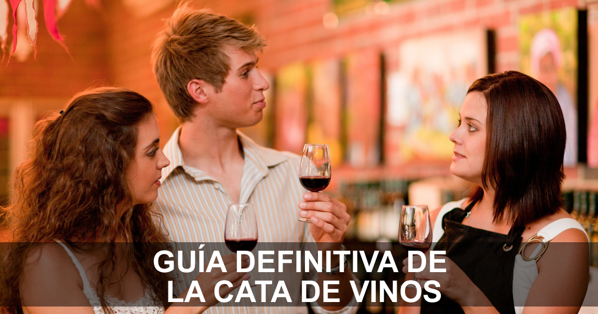 guia-definitiva-cata-de-vinos-2
