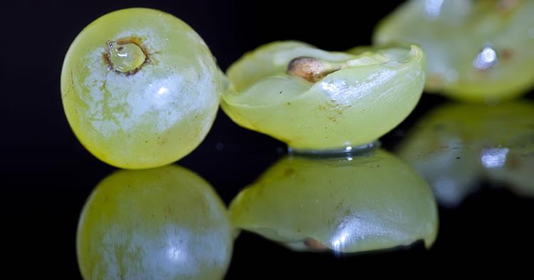 uvas-portada