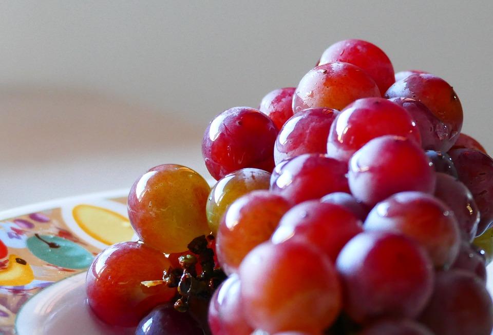 uvasmesa-vinopack