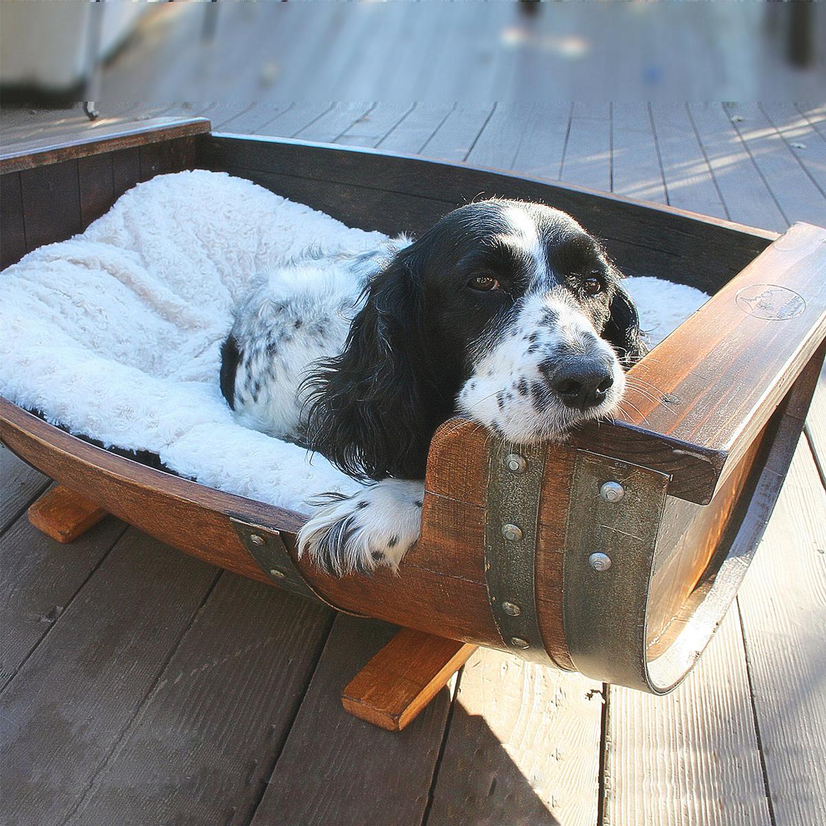 vp-barril-dog